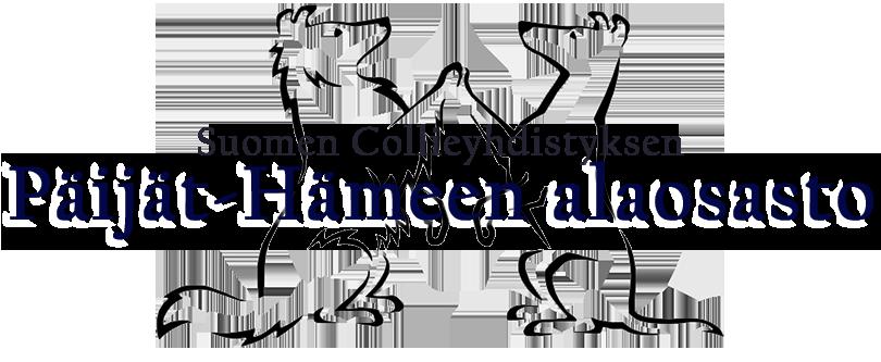 SCY Päijät-Hämeen alaosasto Logo